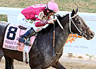 Slideshow: Delta Downs Jackpot Day 2011