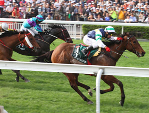 Sacred Kingdom Wins Hong Kong Sprint Again