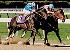 Champion Safely Kept Pensioned