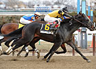 New York Showcase Day Features Seven Stakes