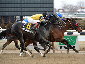 Awesome Vision and Saginaw dead heat in the 2013 Compelling Word.