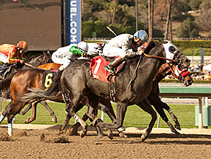 Sahara Sky wins the 2014 San Carlos.