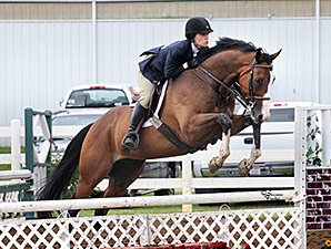 New Vocations Charity Show a Success