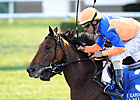 Grade I Winner Samitar Heads Gallorette Field