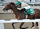 Samraat Prevails in NY-Bred Withers War