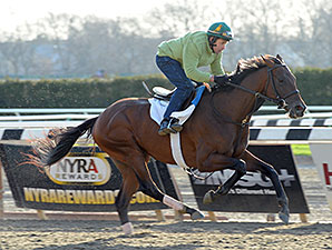 Three Derby Contenders Work in New York
