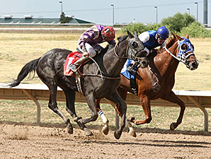 Sandhill Lady wins the 2015 Spicy Stakes.