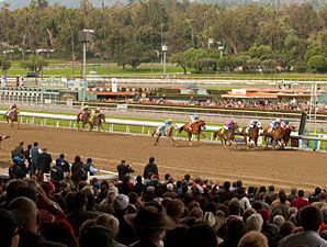 Santa Anita Handle Down in All Categories