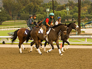 Santa Anita Season Opens With Anticipation