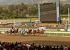 Santa Anita Track to Close for Repair July 11