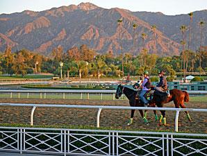 Santa Anita Earns Safety Re-Accreditation