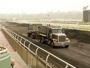 Training on Santa Anita Dirt Begins Dec. 6