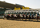 Mick Peterson to Undertake Santa Anita Study