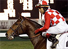 Ky. Derby Trail: Mucho Gracias