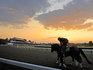 NYRA Releases 30-Day Comparisons for Spa