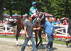 Saratoga Diary: Anticipation Relieved