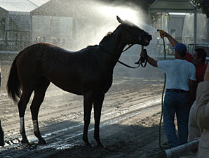 Saratoga Taking Hot Weather Precautions