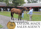 Video: Fasig-Tipton Saratoga Preview 2011