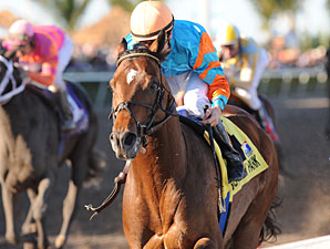 Porter on Pedigrees: Saratoga Holiday