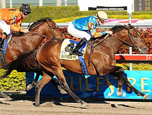 Saratoga Sinner Shines in Holy Bull Win
