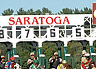 Saratoga Numbers Strong at Mid-Point