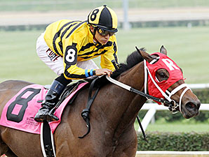 Sassy Kitten wins the 2014 West Virginia Senate President's Cup Stakes.