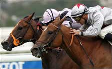 Satwa Queen Repeats in Prix Jean Romanet