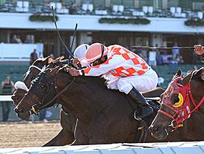 Saucy Don wins the 2015 John J. Reilly Handicap.