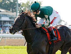 Sayif wins the 2011 Battlefield Stakes.