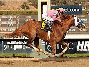 Scherzinger wins the 2014 Santa Monica Stakes.