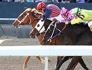 Sea N Suda wins the Rainbow Stakes.