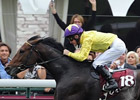 Sea The Stars, History are Arqana Sale Draws