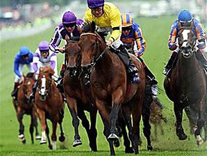 Haskin's Weekend Stakes Analysis