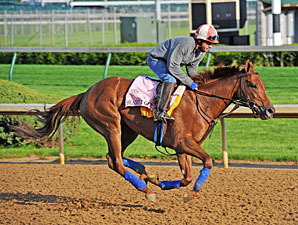 Seaneen Girl - Churchill Downs, May 1, 2013.