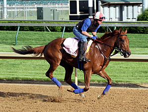 Seaneen Girl - Churchill Downs, May 2, 2013.