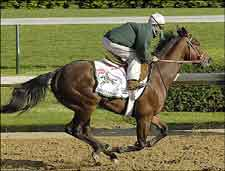 Seaside Retreat Confirmed for Derby After Strong Workout