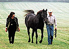 Final Call for Taylors of Seattle Slew Fame