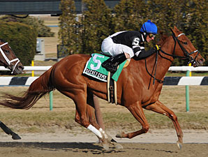 Secret Gypsy wins the 2009 Distaff Handicap