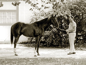 Secretariat Foaled 40 Years Ago
