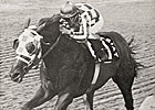 Secretariat Podcast: Post TC, Ron Turcotte