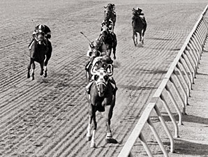 Secretariat wins the 1973 Preakness Stakes.