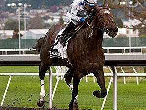 Seduire wins the 2014 Golden Gate Debutante Stakes.