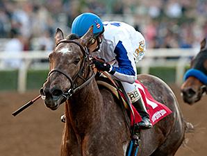 Seduire wins the 2014 Santa Ynez Stakes.