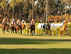 The 2013 Hollywood Derby.