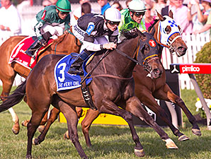 Tantalizing Turf Stakes on Preakness Program