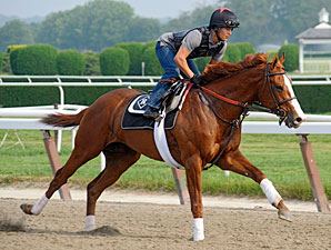 Busy Weekend Planned for Belmont Contenders