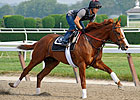 Shackleford: 'All Indications Are Good'
