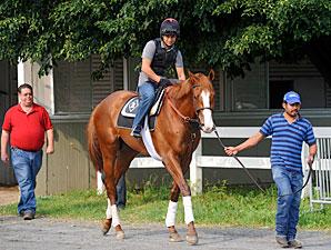 Shackleford - Belmont, June 1, 2011.