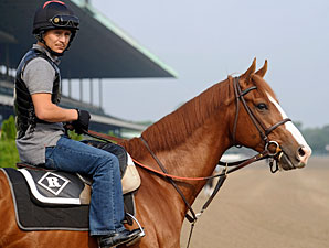 Derby, Preakness Winners Still Going Strong