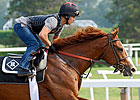 Haskell Draws Eight; Shackleford Favored